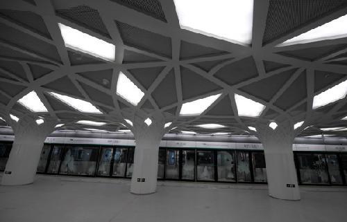 """6月19日,在北京地铁奥运支线森林公园南门站站台拍摄的""""森林""""主题造型"""