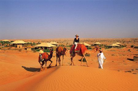 沙漠酒店 阿拉伯的盛宴