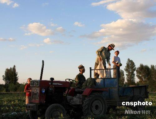 华西村人均收入_河北农民人均纯收入