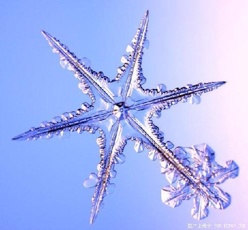 """被人们称做""""雪花""""的树枝状雪晶往往生成于-15°c左右"""