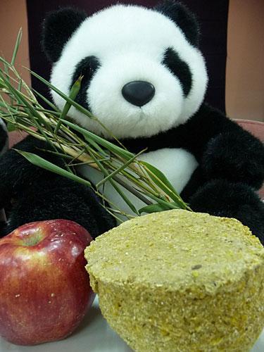 图片 新闻图片 > 正文   台北市立动物园为大熊猫团团圆圆准备了食物