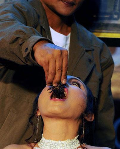 令人叹服的蛇蝎美人——坎查纳 - haozjq - 我的博客