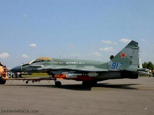 固定翼飞机包括:24架为阿尔及利亚生产的米格-29