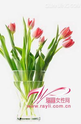 金果榄,曼陀罗,三梭,红凤仙花,剪刀股,坚荚树,阔叶猕猴桃,海南蒌,苦