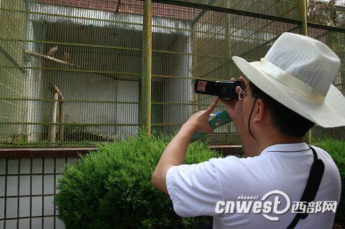 2009年7月20日 - zhuhuanainiao - 朱鹮爱鸟协会