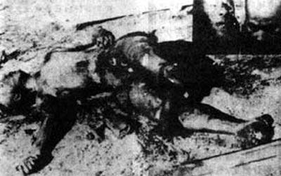 真正王二小死亡的照片-叛国出逃 坠机身亡