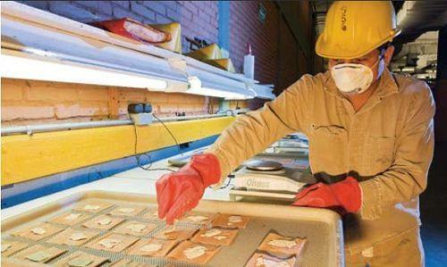 圖:(上圖)圖斯特拉-古鐵雷斯工廠擁有2萬平方米的南美螺旋錐蠅繁育圖片