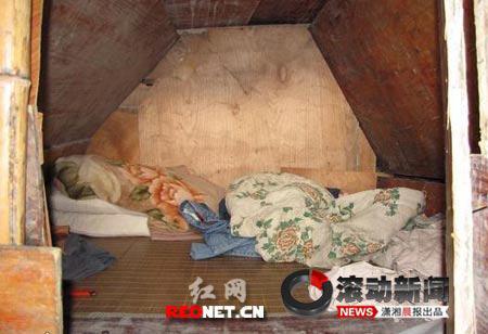 网友称农民工在山洞中用木棒支撑建房(组图)