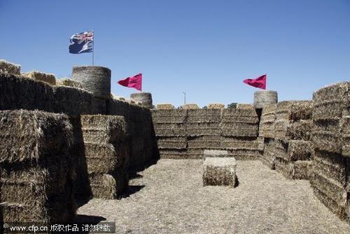 组图:农夫用干草搭建城堡成旅游景点