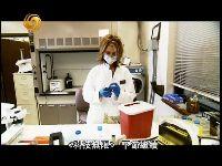 鉴识最前线 DNA检测