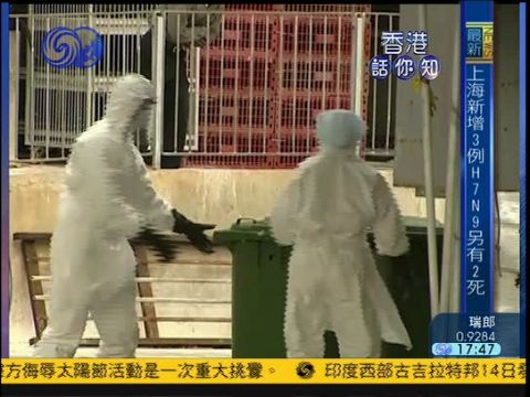 2013-04-14香港话你知 内地进港活禽需通过H7禽流感病毒检测