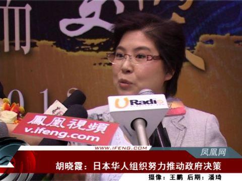 胡晓霞:日本华人组织努力推动政府决策