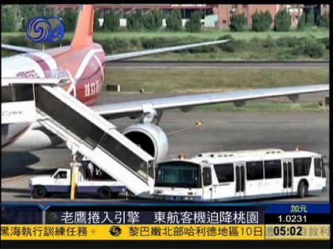东航飞上海客机引擎卷入一只老鹰 迫降台湾