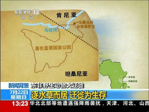 新闻背景:东非野生动物迁徙纵跨东非两国