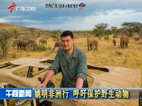 姚明非洲行 呼吁保护野生动物