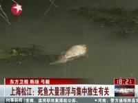 上海松江:死鱼大量漂浮与集中放生有关