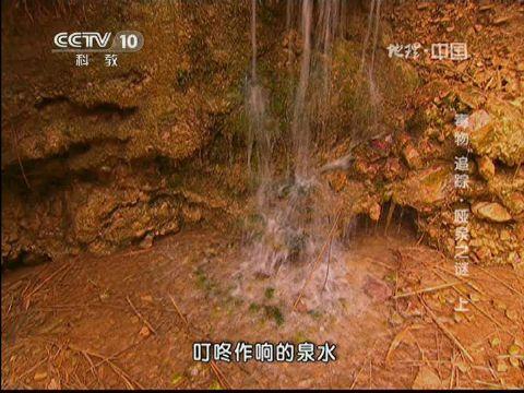 """2013-05-29地理中国 """"毒物""""追踪——哑泉之谜(上)"""