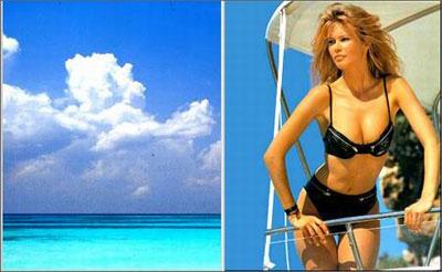 全球十大泳装美女海滩