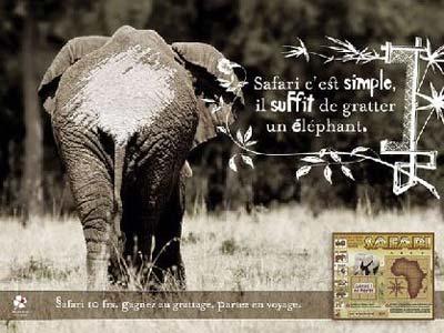 惊叹:奇妙的动物园海报(图)