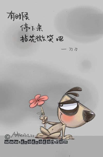 韩国变身小姐_轻阅读:刀刀狗的哲理--有时候_时尚_凤凰新媒体