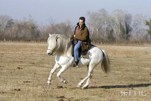 萨科齐乡间潇洒骑白马