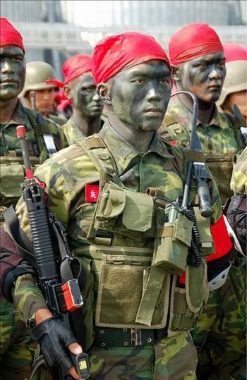 非洲之星_台军特种队训练天堂之路[组图]_资讯_凤凰网