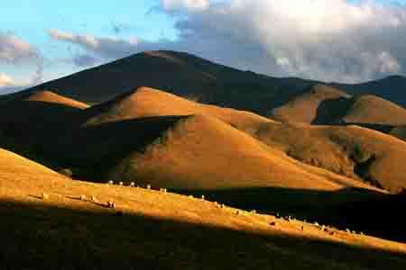 每年秋天稻子成熟时,整个金钟坝子呈现一片丰收的景象,麦浪层层,薄雾