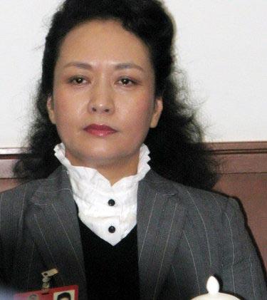 彭丽媛参加青联界小组讨论