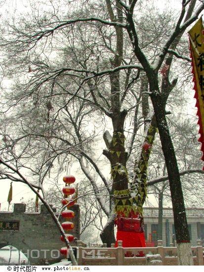 动物大迁徙_中国古代人口大迁徙