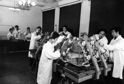 技术人员集中组装水晶棺,右二为作者