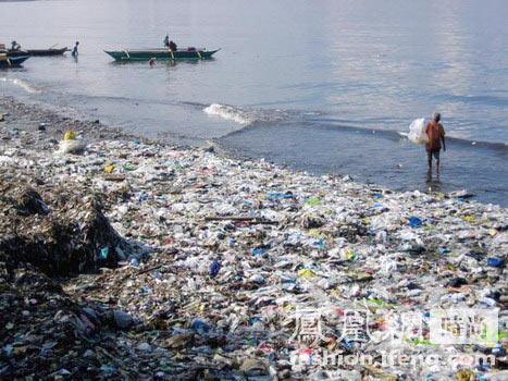 垃圾造成海洋动物