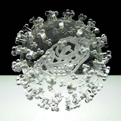 流感病毒手绘模型