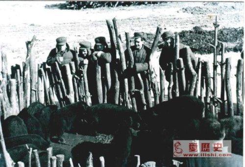 愿军与朝鲜妇女结婚 朝鲜战争被俘女志愿军下