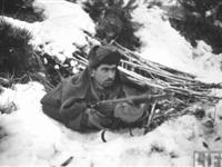 朝鲜战场上与志愿军对阵的土耳其军