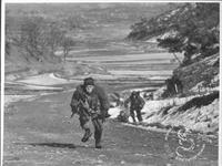 1951年朝鲜战场遭遇伏击的美军