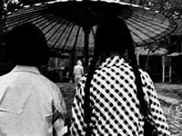 老照片:中国五十年代的大学生