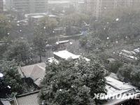 京城迎来今冬第一场雪[图集]