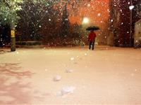 北京半夜打雷降大雪[图集]