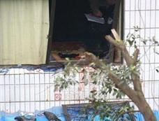 重庆一男子劫持孕妇作为人质被击毙[图集]