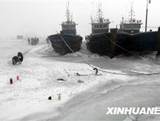 渤海湾遭遇30年来最严重海冰灾害[图集]