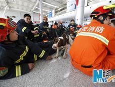 山东地震救援队赶赴玉树灾区