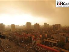石家庄26日中午出现沙尘天气[图集]