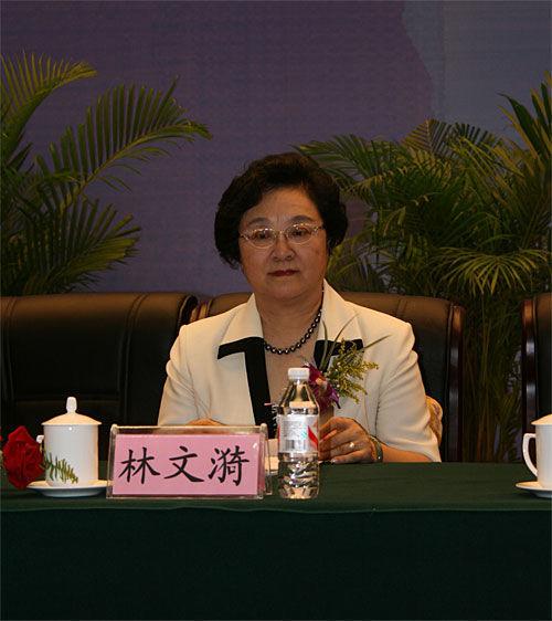 政协副主席林文漪:汽车业体现中国工业化水平
