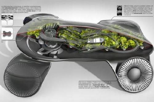 超豪华光合作用概念车