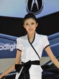 上海车展讴歌车模