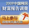 2009中国网民财富报告调查