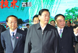 各级政府领导参观吉利展台