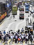 管窥香港交通:密度世界最高却从不堵车 20个人性化细节