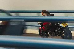 《凤凰解密》影片中摩托车的速度与激情