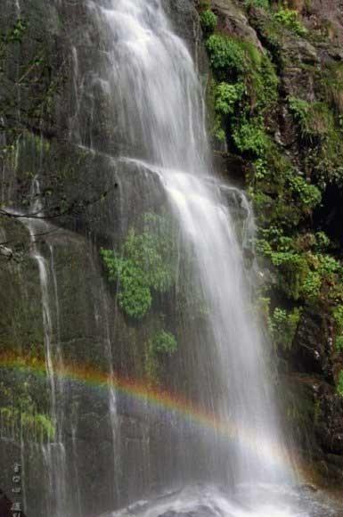 张家界八大公山风景[综述 图片 论坛]区  八大公山自然保护区距桑植